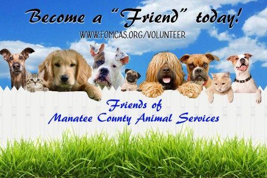 I volontari sono i benvenuti
